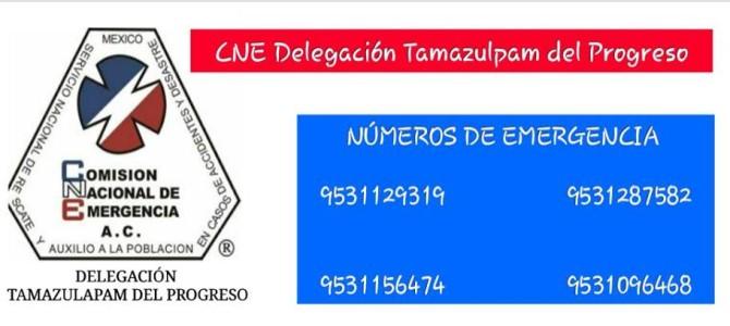 CNE Delegación Tamazulapan en constante capacitación